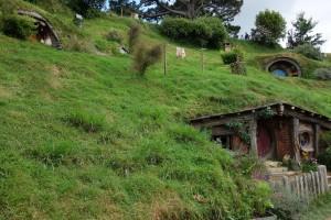 hobbiton9